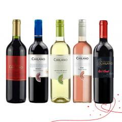 Combo Vinho Chilano - 5 Unidades (Syrah | Merlot | Sauv. Blanc | Rosé | Red Blend)